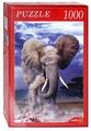 Пазл Рыжий кот Могучий слон (КБ1000-6926), 1000 дет.