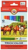KOH-I-NOOR Карандаши цветные Triocolor, 12 цветов (3142/12)