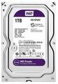 Western Digital WD Purple 1 TB (WD10PURZ)