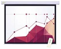 Рулонный матовый белый экран cactus Motoscreen CS-PSM-183x244