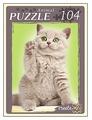 Пазл Рыжий кот Самый любимый котенок (П104-2633), 104 дет.