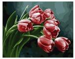 "Color Kit Картина по номерам ""Букет тюльпанов"" 40х50 см (CG867)"