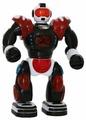 Робот Taiko Кибербот R0040