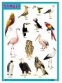 Пособие Мозаика-Синтез Звуки природы. Птицы МС11481