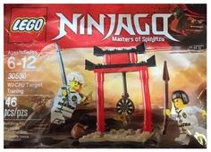 Конструктор LEGO Ninjago 30530 Тренировка Ву-Кру