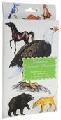 Набор карточек Маленький гений Животные Северной Америки 21x15 см 16 шт.