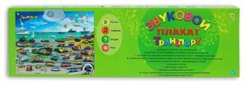 Электронный плакат Рыжий кот Транспорт