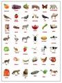 Плакат Лерман Шпаргалки для мамы. Картинки Домана 1-3 года