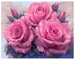 """Цветной Картина по номерам """"Прекрасные розы"""" 40х50 см (GX7903)"""