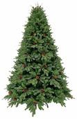 Triumph Tree Ель Торжественная с шишками