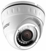 Сетевая камера Ginzzu HID-2031S