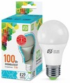 Лампа светодиодная ASD LED-STD 4000K, E27, A60, 11Вт