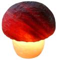 Солевая лампа Wonder Life Гриб