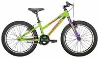 Подростковый горный (MTB) велосипед Format 7424 (2019)