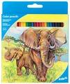 Kite цветные карандаши Животные, 24 цвета (K17-055-1)