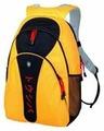 Рюкзак Toshiba PX1308E-1NCA