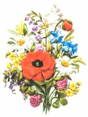 Цветной Вышивка лентами Полевые цветы 20 х 30 см (VL006)