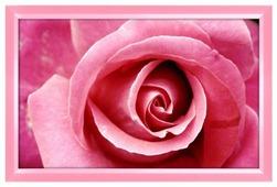 Алмазная живопись Набор алмазной вышивки Бутон розы (АЖ-1202) 40х25