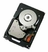 Жесткий диск IBM 44W2234