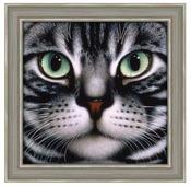 Алмазная живопись Набор алмазной вышивки Мордочка кота (АЖ-1085) 25х24 см