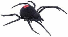 Интерактивная игрушка робот ZURU Robo Alive Ползающий паук