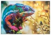 Разделочная доска Gift'n'Home Краски природы CB-Colors 20х30х0.4 см