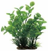 Искусственное растение ArtUniq Ливистона 20 см