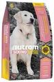 Корм для собак Nutram S10 Для пожилых собак