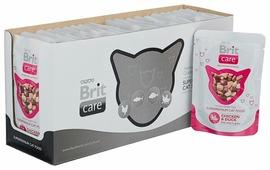 Корм для кошек Brit Care с курицей, с уткой 80 г (мини-филе)