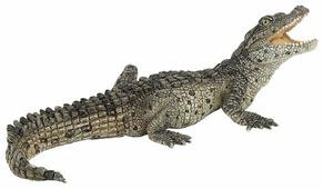 Фигурка Papo Крокодильчик 50137