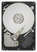 Жесткий диск Seagate ST3250318AS