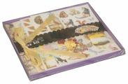 Набор для создания альбома Color Kit Шебби шик (SRA002)