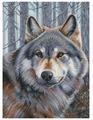 Белоснежка Набор для вышивания Волк 27 x 36,5 см (200)