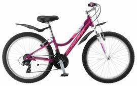 Подростковый горный (MTB) велосипед Schwinn Breaker 24 Girls (2019)