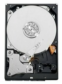 Жесткий диск Western Digital WD AV-GP 500 GB (WD5000AVDS)