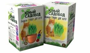 Набор для выращивания Инновации для детей Юный садовод. Вырасти травку для кота
