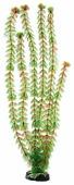 Искусственное растение BARBUS Кабомба 50 см