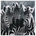 Чехол для подушки Gift'n'Home Три зебры 40х40 см (НВЛ-40 Zebra-3(g))