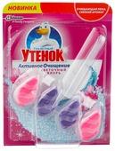 Туалетный утенок блок для унитаза Цветочный вихрь