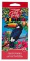 ErichKrause Цветные карандаши ArtBerry 24 цвета (32480)