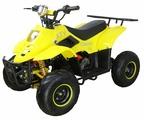 ATV Квадроцикл Classic 6E (600W)