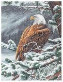 Dimensions Набор для вышивания Eagle s Eye View (Орлиный взор) 38 х 30 см (35117)