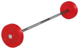 Набор спортивных штанг MB Barbell неразборная MB-BarMW-C 25 кг