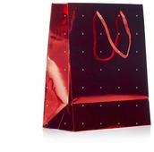 Пакет подарочный УРРА Лазер 18х23х10 см
