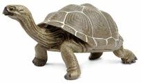 Фигурка Safari Ltd Сухопутная черепаха 260729