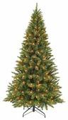 Triumph Tree Ель Лесная Красавица стройная (лампы)