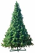 Green Trees Ель Рублевская
