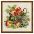 Риолис Набор для вышивания крестом Спелые яблоки 30 x 30 (1450)