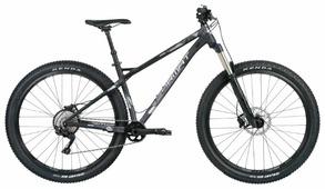 Горный (MTB) велосипед Format 1312 (2019)