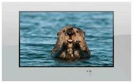 """Телевизор AquaView 32 Smart TV 32"""""""